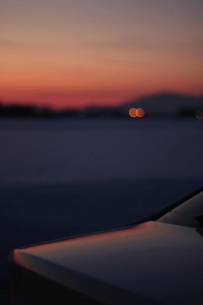 白は夕日に映えるなぁ。